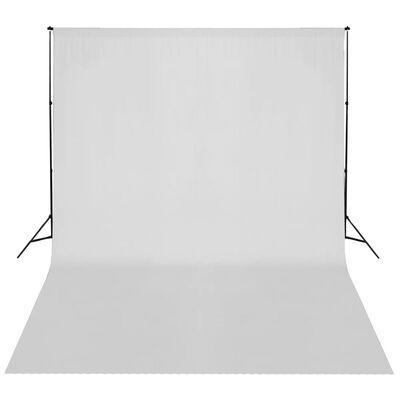 vidaXL fonu balsta sistēma, balts fons, 300x300 cm
