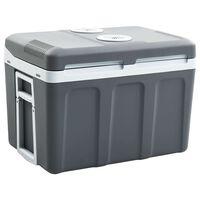 vidaXL pārnēsājama dzesēšanas kaste, termoelektriska, 45 L, A++
