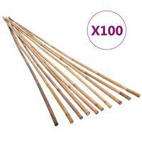 vidaXL dārza bambusa mietiņi, 100 gab., 120 cm