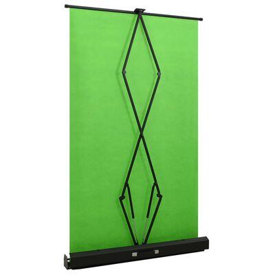"""vidaXL foto fons, zaļš, 95"""", 4:3"""