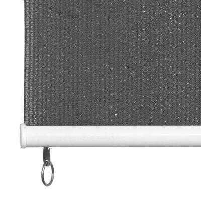 vidaXL āra ruļļu žalūzijas, 300x230 cm, antracītpelēkas