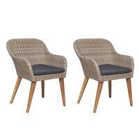 vidaXL dārza krēsli ar spilveniem, 2 gab., PE rotangpalma, brūni