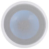 vidaXL iebūvējams sienas un griestu skaļrunis, 180 W